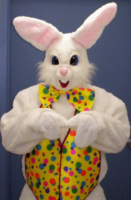 Pictures Of The Easter Bunny 68