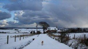 snowclouds