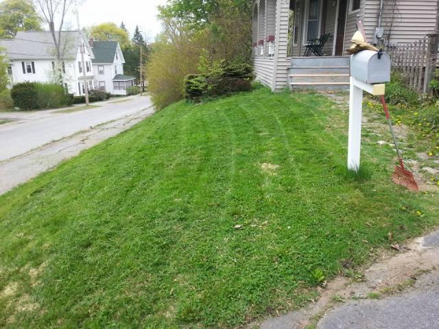 Lawn 3