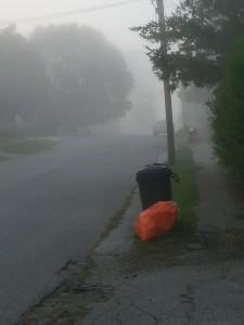 Austin fog 4