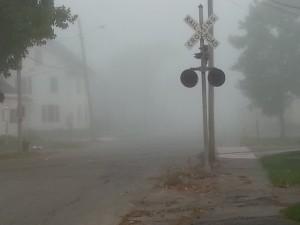 Austin fog 7