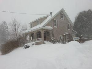 Juno House