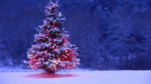 Christmas, Christmas tree, Christmas decorations, short story, The Devil, humor, Modern Philosopher