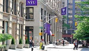 NYU, writing, TV pilot, humor, Modern Philosopher