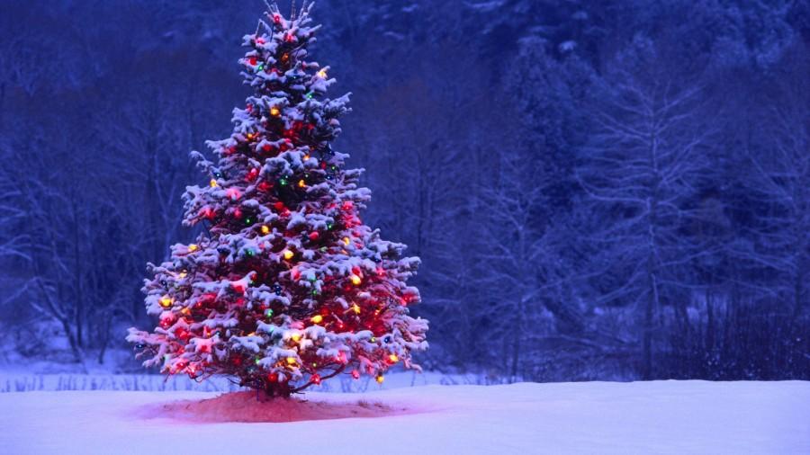 Christmas, holidays, humor, Modern Philosopher