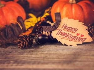 Thanksgiving, humor, life, Modern Philosopher