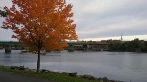Maine, fall, humor, Modern Philosopher