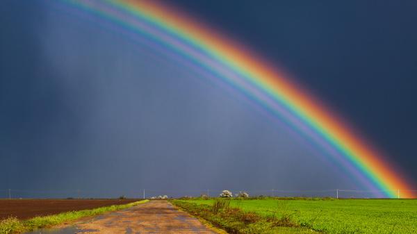 rainbows, be positive, life, humor, Modern Philosopher