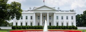 White House, Trump, CDC, humor, Modern Philosopher
